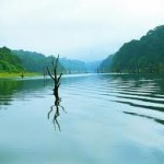Cochin, Thekkady, Munnar, Alleppey, Kovalam 3 Nights / 4 Days Tour Packages