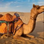 3 Nights / 4 Days Ajmer – Pushkar Tour Package