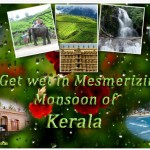 Magical Monsoon Packages in Kerala