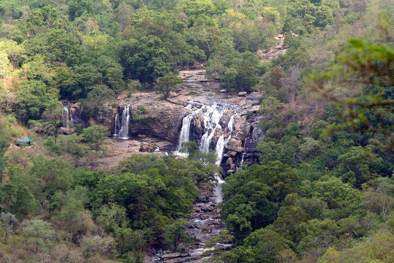 Chinnar Wildlife Sanctuary - Munnar, Kerala