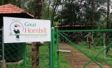Book Great Hornbill Resort - Nilambur, Kerala